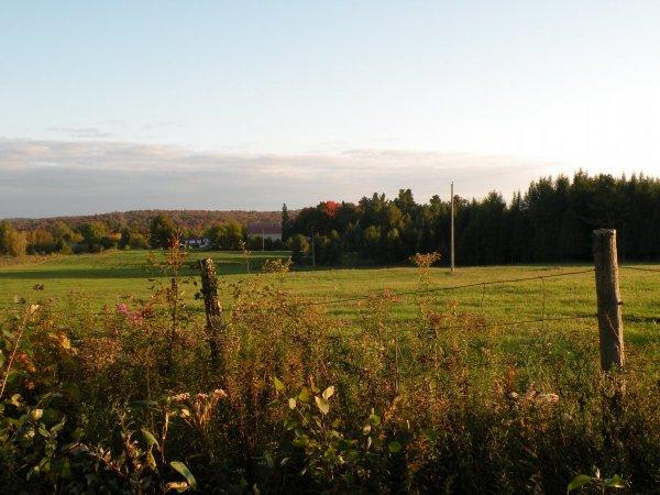 Teintes d'automne - chemin Lisgar
